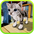 Stray Cat Open World Game icon
