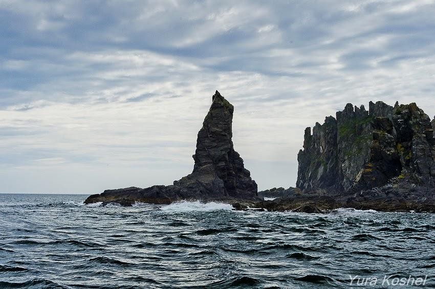 Шантарские острова 2018