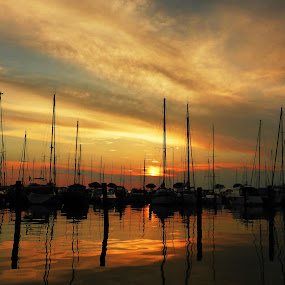 Marina by Amas Art - Landscapes Waterscapes ( sunset, boats, sundown, seascape,  )