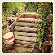 Photo: Romanian country well (credit Flavia G.) #intercer #romania #country #well #water #rural #bucket #green #life #cute #beautiful #wood - via Instagram, http://ift.tt/1q8caGe