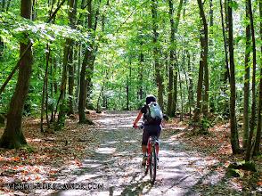 Photo: Forêt de Meudon, au sud de Paris - E-guide balade à vélo de Meudon à Sceaux par veloiledefrance.com  Meudon Forest, south of Paris - Bike ride e-guide from Meudon to Sceaux by veloiledefrance.com