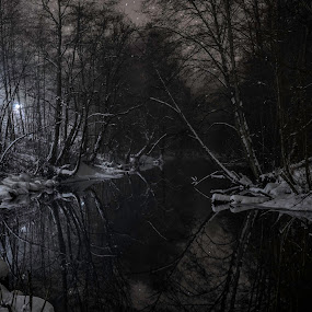 Akerselva by Patrick Janson - Nature Up Close Water ( reflection, tree, fog, oslo, norway, river, mist,  )