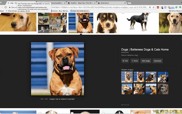 Google View Image - Viewpix