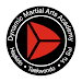 Dynamic Martial Arts Icon