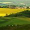 Morava květen 2013 (54).jpg