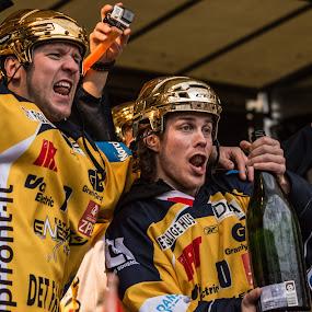 Celebrating by Lindberg-Photo.dk, Mathias Lindberg - Sports & Fitness Ice hockey ( lindberg, danmark, lindberg-photo, lindberg-photo.dk, mathias lindberg, denmark, esbjerg, celebration, esbjerg energy, torvet i esbjerg,  )