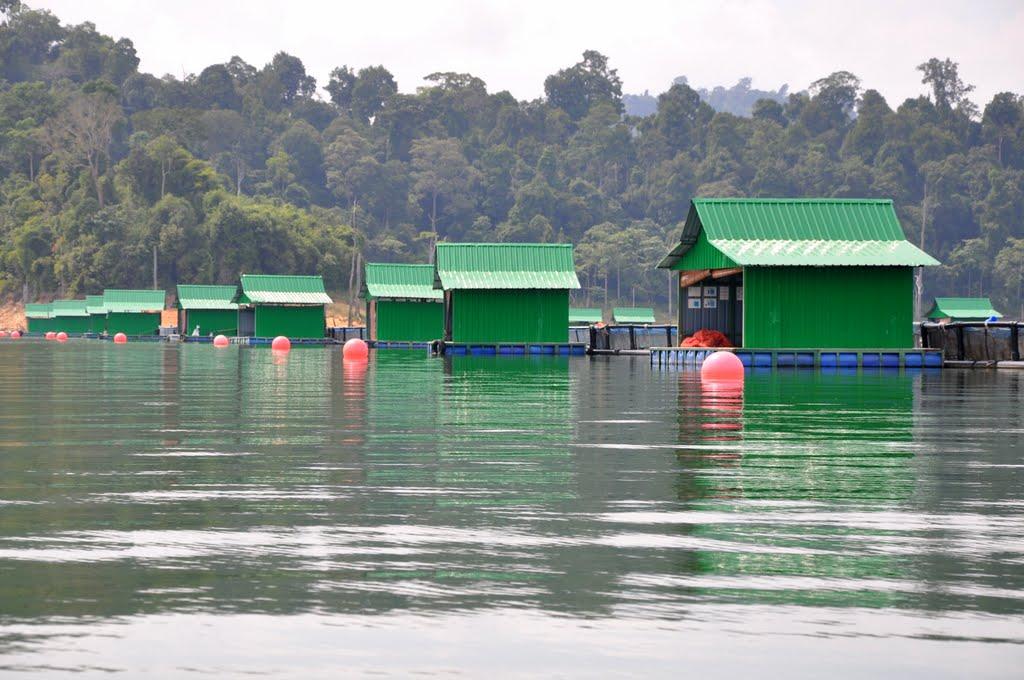 temenggor lake.jpg