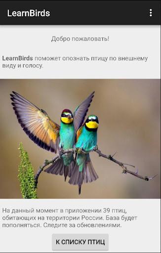 LearnBirds