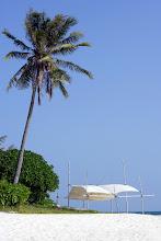 Photo: Beach sunshade