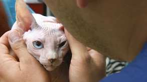 Naked Kitten's New Dad thumbnail