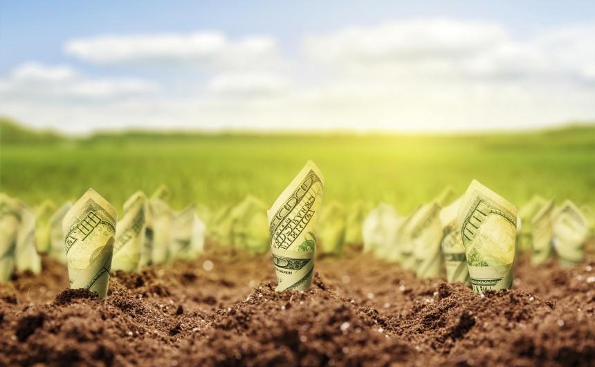 Lợp mái tôn cho trang trại giúp tiết kiệm chi phí