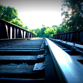 Railroad Bridge by Virginia Howerton - Transportation Railway Tracks ( railroad, train, transportation, bridge, railroad bridge,  )