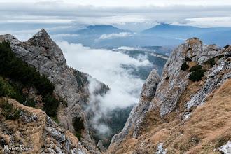 Photo: După zona de obârşie a văii Bujorilor, următorul fir important trebuie să fie valea Poienii