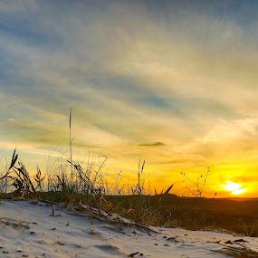 Sunset over the dunes by Angie Birmingham - Landscapes Beaches ( orange, sand, sand dunes, sunset, beach )