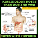FORM 1 AND 2 BIOLOGY NOTES + PICTURE EXPLANATIONS icon
