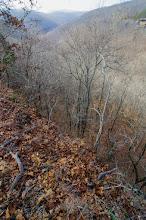 Photo: Whitaker Creek Valley