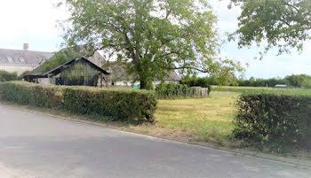 terrain à Briou (41)