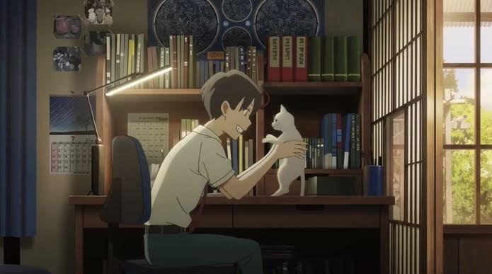 Amor de gata