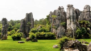 imagen de un paisaje natural