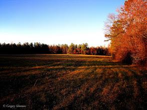 Photo: January 30, 2012 - Fallow Fields #creative366project