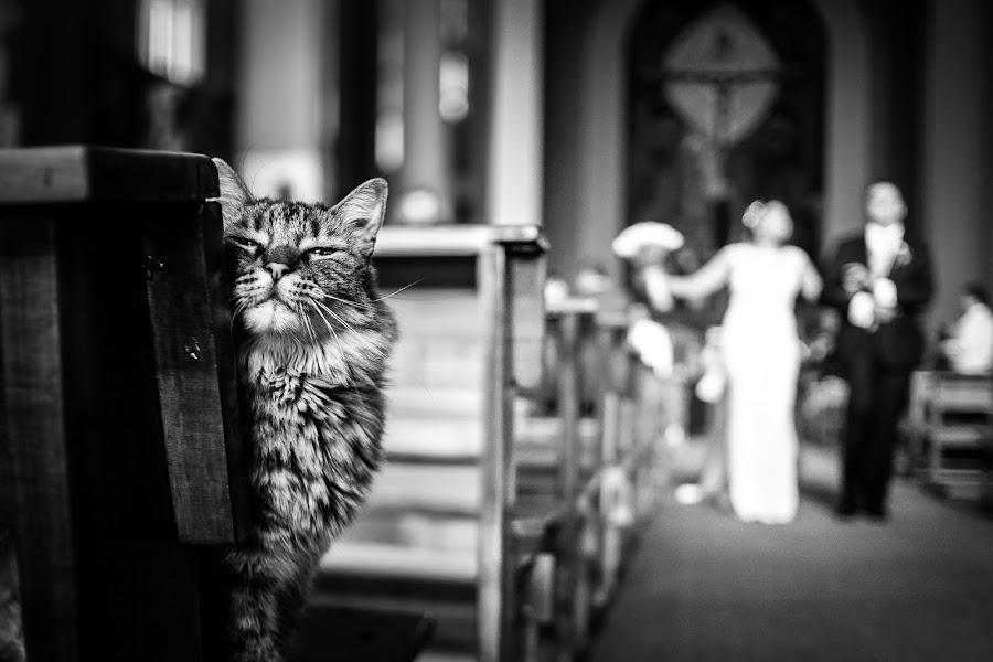 Wedding photographer Christian Puello conde (puelloconde). Photo of 11.03.2019