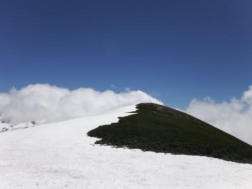 山頂へ向う