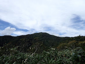 登山道から銚子ヶ峰