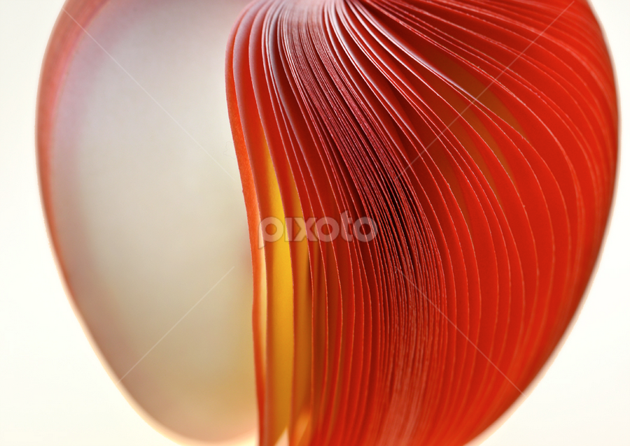 by Marianna Armata - Abstract Fine Art ( red, paper, apple, pages, fine art, note pad, marianna armata )
