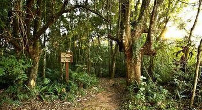 Canto da Floresta Ecoresort