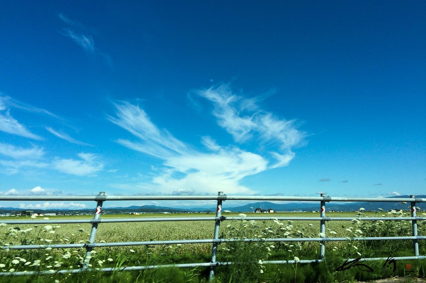 青空に広がる薄雲