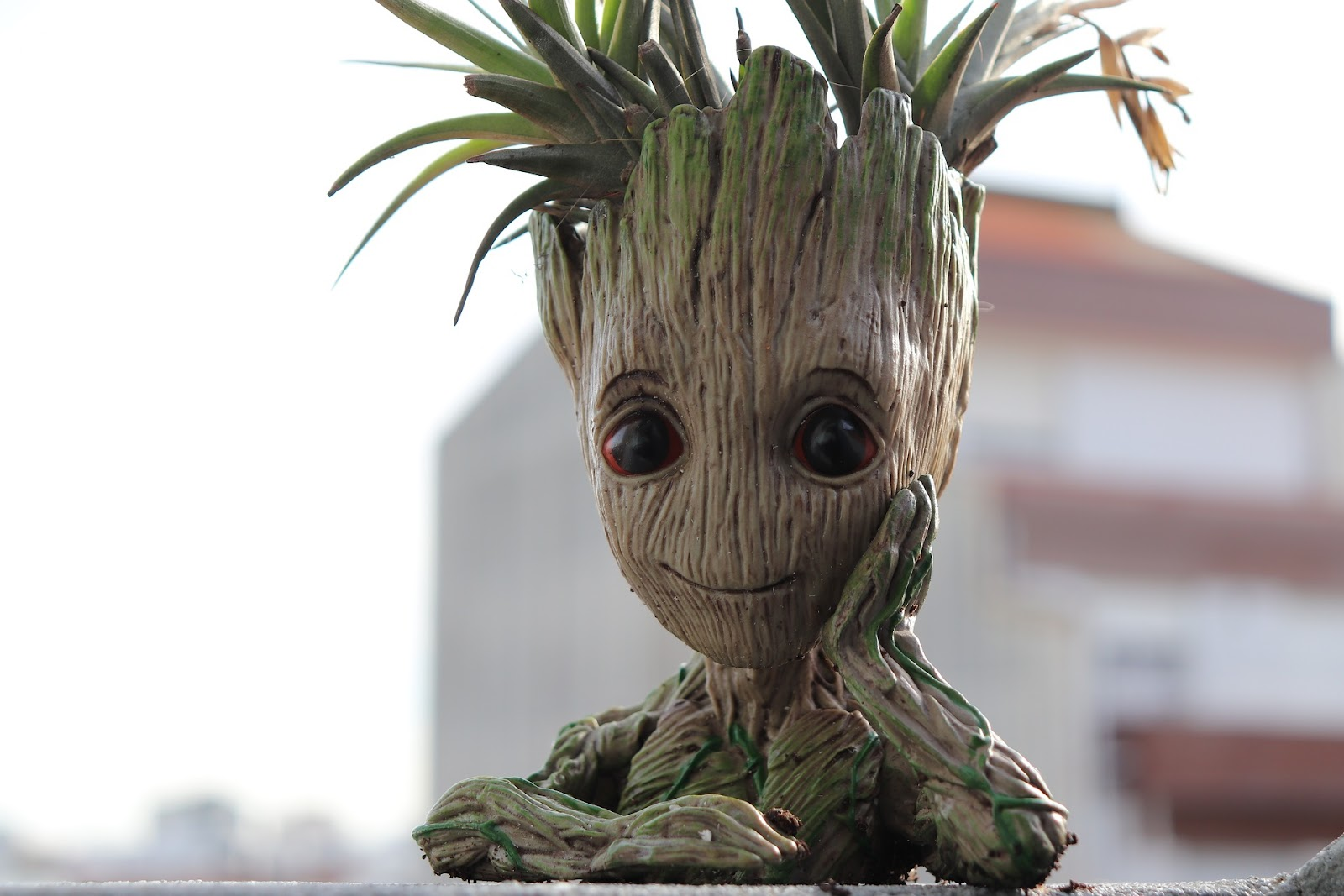 Groot planter container