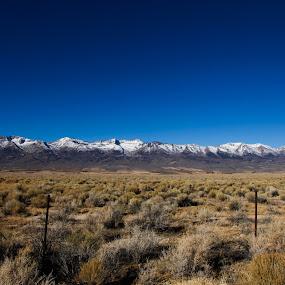 Snow Border by Surentharan Murthi - Landscapes Deserts ( field, u.s.a, mountain, sky, desert, nature, blue, nevada, meadow, landscape, dessert )