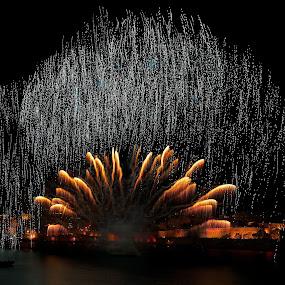 Light Storm by Renata Apanaviciene - Public Holidays July 4th ( amazing, fireworks, july, light, fire, light art )