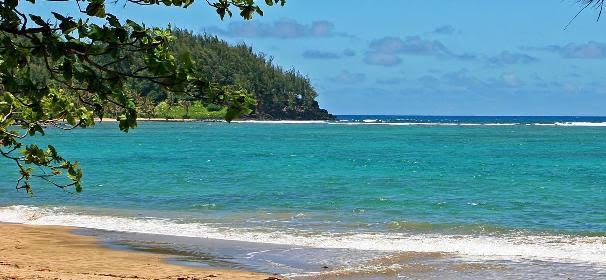 Tana Island