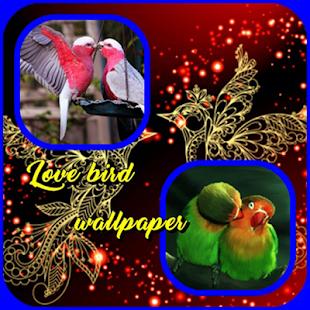 Láska ptačí tapety - náhled