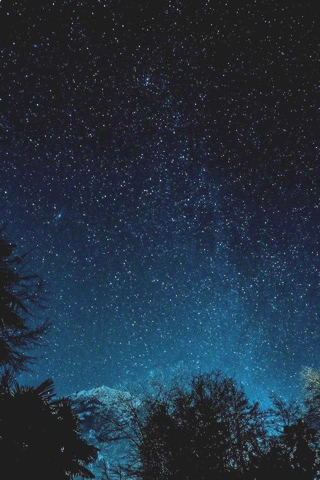 Polvere di stelle di Tiziana Detoni