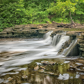 Waterfall Glen by Amy Ann - Landscapes Waterscapes ( afternoon, green, rocks, stream, waterfall, woods, long exposure, water,  )