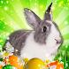 Hidden Object: Easter Egg Hunt