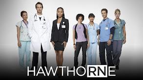 HawthoRNe thumbnail