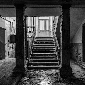 Abandoned by Nina Kriznic - Buildings & Architecture Decaying & Abandoned ( interior, building, mansion, black and white, buildings, architectural, architecture, decay, abandoned,  )