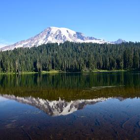 Mt Rainier Reflection by Kris Schmidt - Landscapes Mountains & Hills