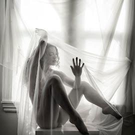 Metaporphosis by James Wayne - Nudes & Boudoir Artistic Nude ( studio, natural light, implied nude, art nude, black and white, window light, keira grant, body sculpture )