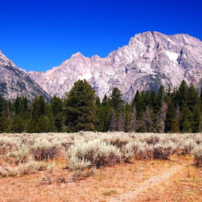 by Harold Stoler - Landscapes Mountains & Hills ( mountains, scenic, landscapes, fields )