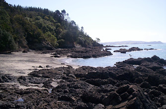 Photo: Secluded little shell beach