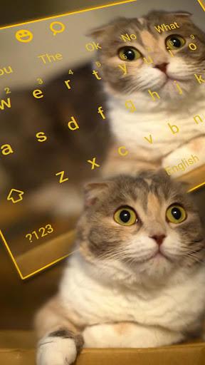 3D Live chubby Cute Kitty Keyboard 10001 screenshots 1