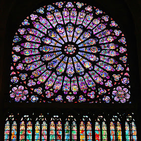 Untitled by Amanda Dacey - Buildings & Architecture Places of Worship ( window, notre dame, paris france, stained-glass )