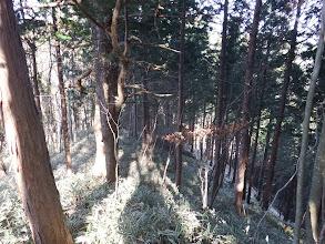 右の尾根に入ると下(右)に林道が見える