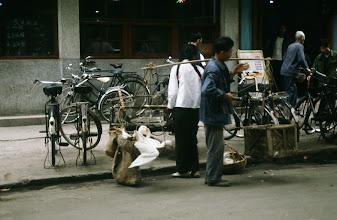 Photo: 11186 南京/市街/アヒル