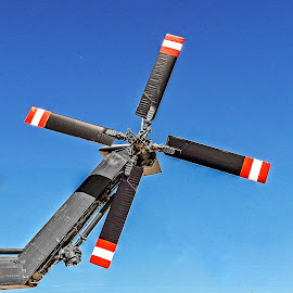 Rotor by Richard Michael Lingo - Transportation Helicopters ( rotor, helicopter, arizona, chopper, transportation )