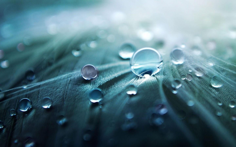 Titisan Hujan Gambar Animasi Apl Android Di Google Play